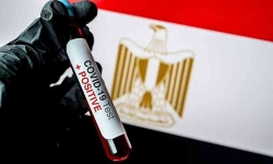 وزارة الصحة المصريه تسجل 141 إصابة جديدة بفيروس كورونا